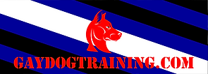 carrousel-gaydogtraining-1.png
