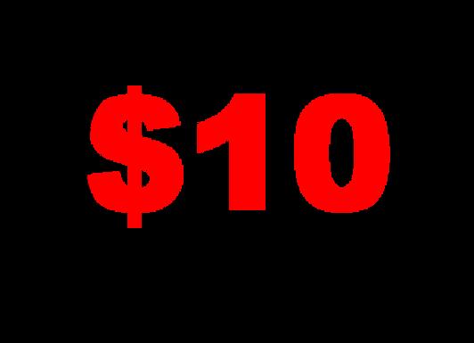 MISCELLANEOUS ITEM $10.00