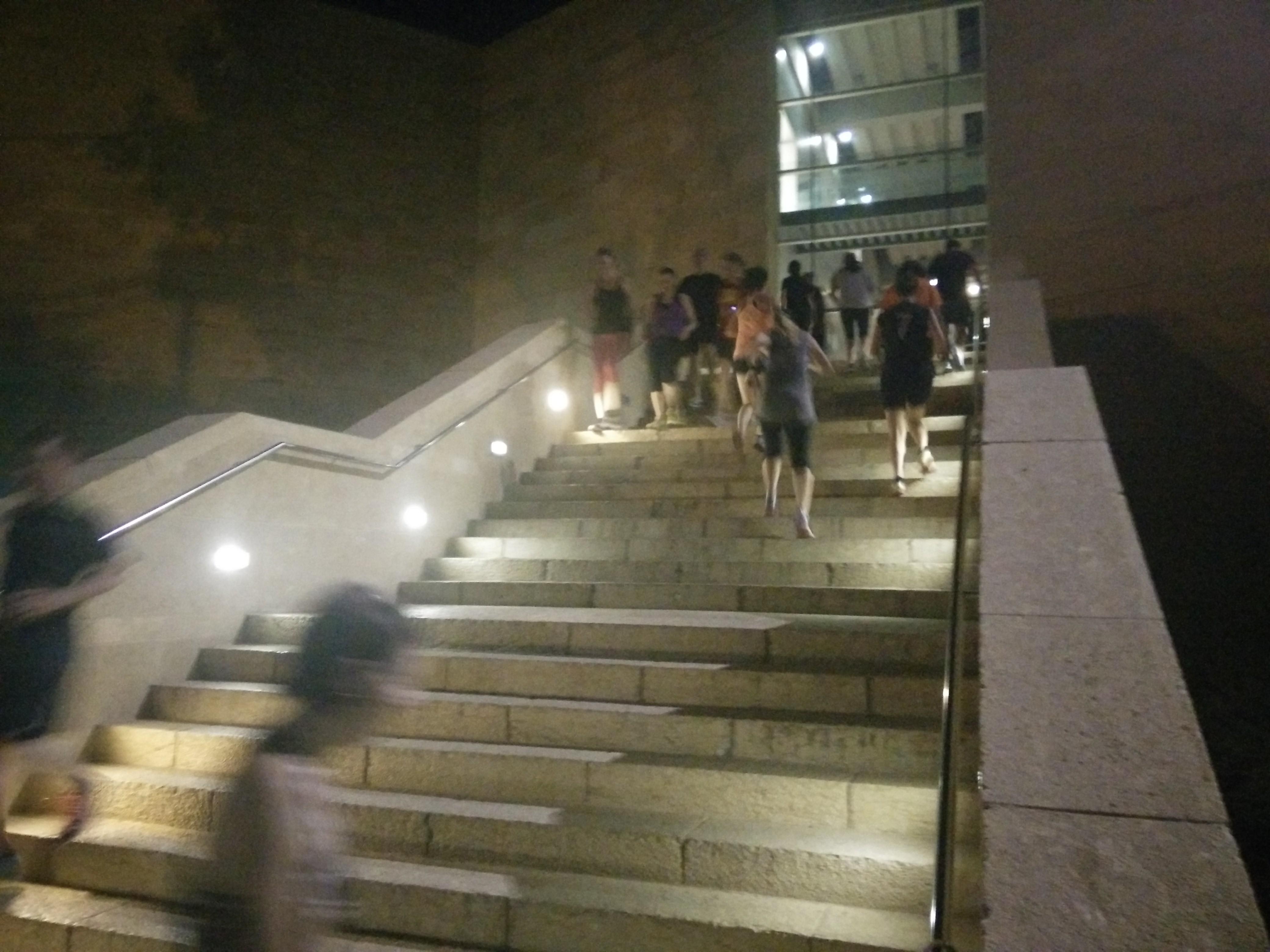 מדרגות עולים ויורדים