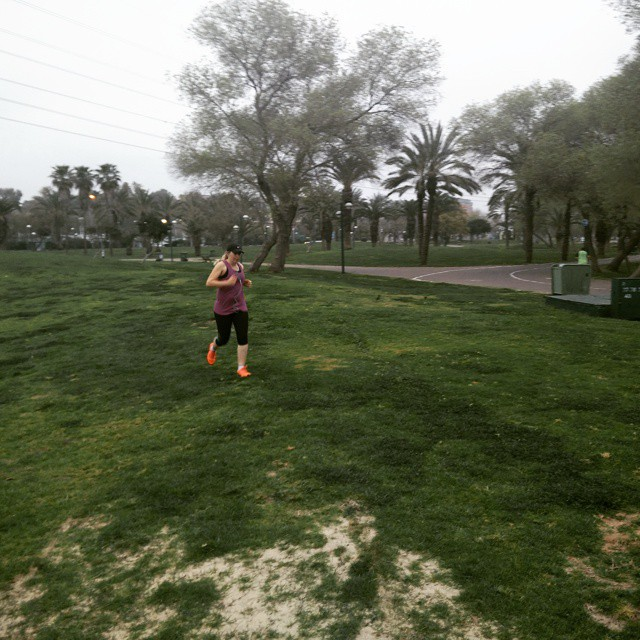 Instagram - #runnershigh_israel