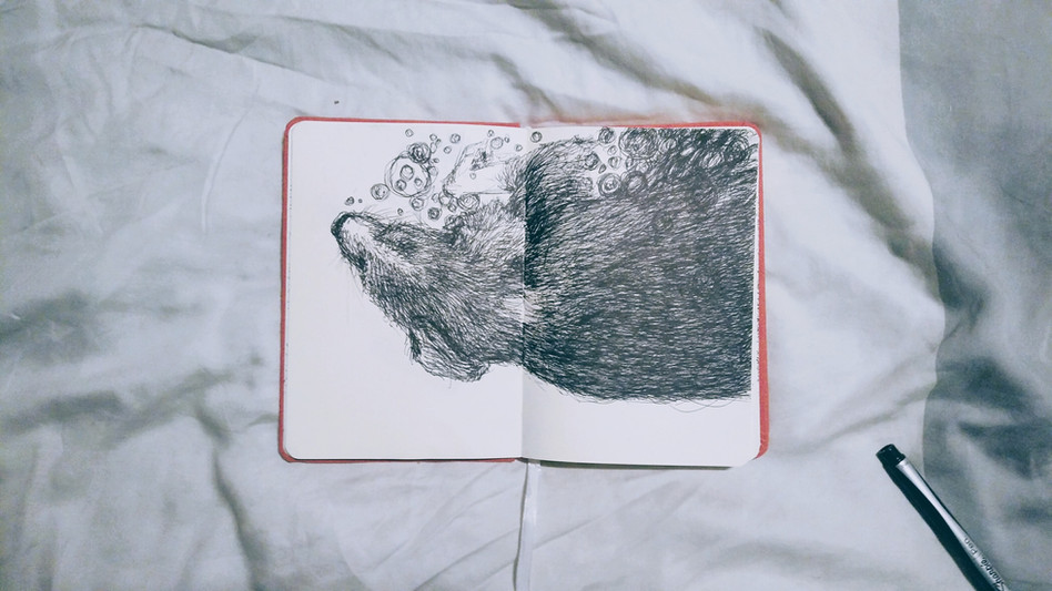 water rat.