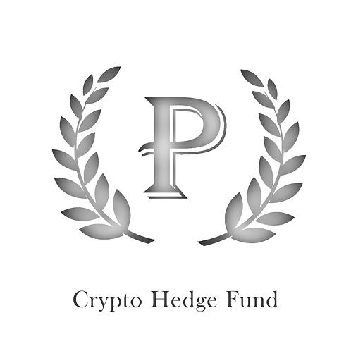 Plutus Capital Investment