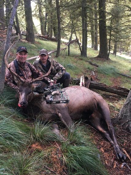 2019 Bull Elk Bow