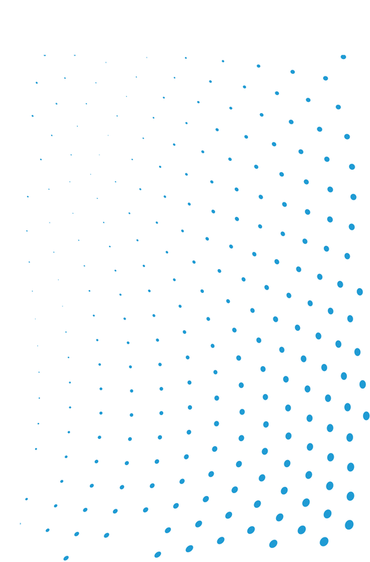 MSD_Mini-Bubble-Pattern_Log.png