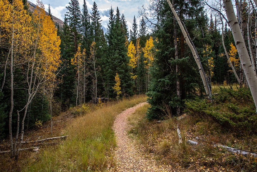 Montana Fall Trail
