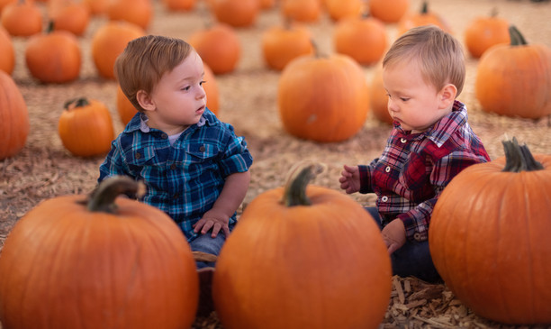 R&S Pumpkin Patch-8262.jpg