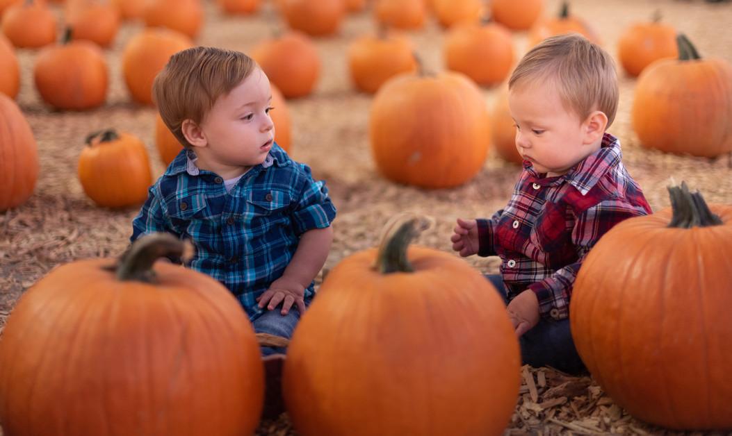R&S Pumpkin Patch-8262.jpg