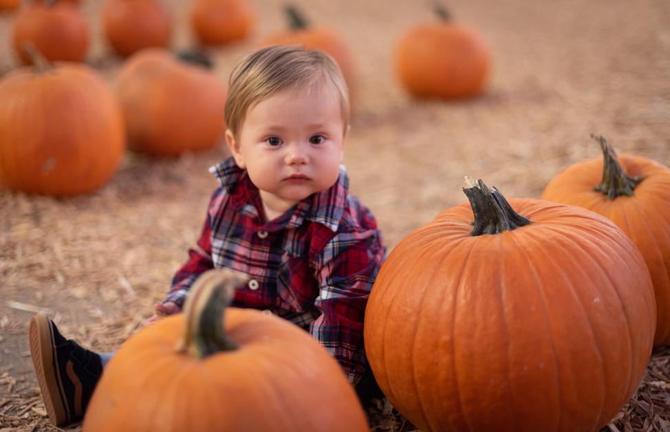 R&S Pumpkin Patch-8250.jpg