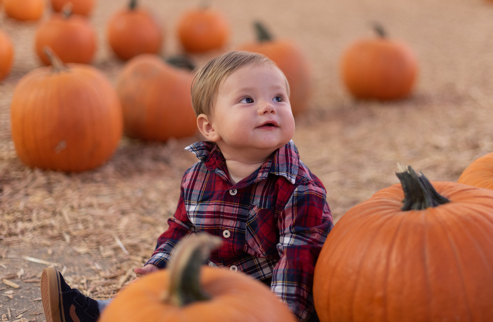 R&S Pumpkin Patch-8254.jpg