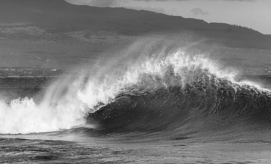 Maui Wave B&W