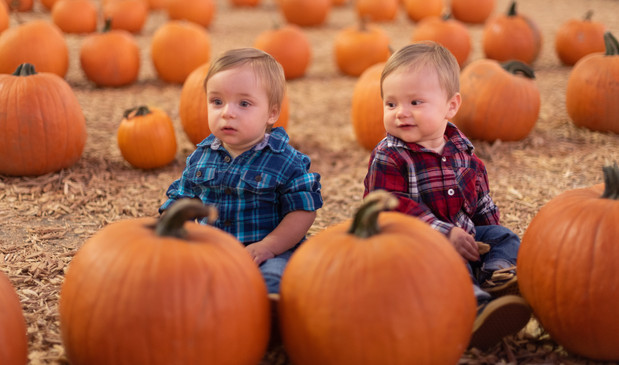R&S Pumpkin Patch-8282.jpg