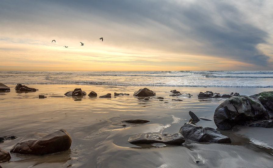 Coastal Friends - San Clemente