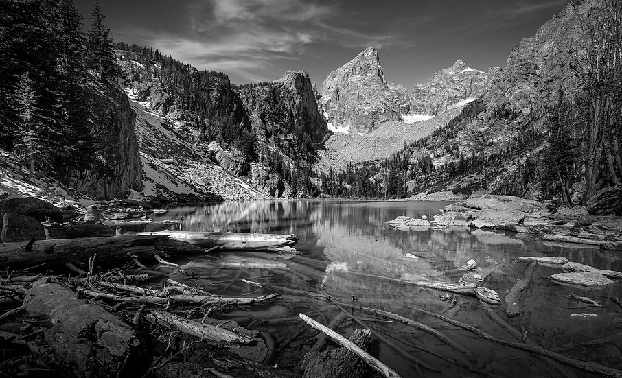 Delta Lake with logs, Wyoming