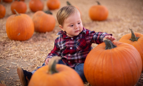 R&S Pumpkin Patch-8243.jpg