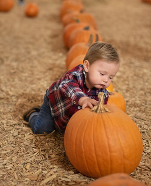 R&S Pumpkin Patch-8477.jpg