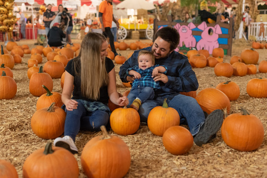 R&S Pumpkin Patch-8635.jpg