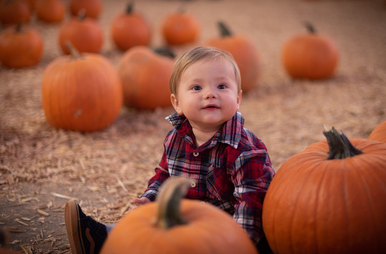 R&S Pumpkin Patch-8253.jpg