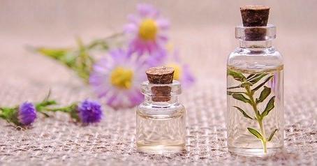 L'huile essentielle de Ravintsara, votre osteo de Champhol-Chartres vous la conseille fortement !