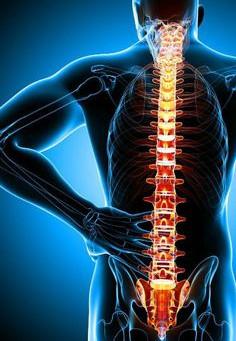 Les douleurs de la spondylarthrite ankylosante soulagées avec l'ostéopathie