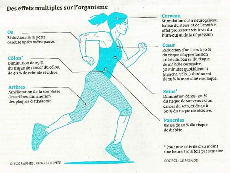 Votre ostéopathe de Champhol-Chartres vous parle de l'activité physique et ses effets sur le corps