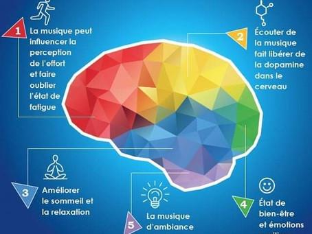 Votre ostéopathe de Champhol-Chartres vous parle des effets positifs de la musique sur votre cerveau