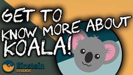 1. What is Koala?