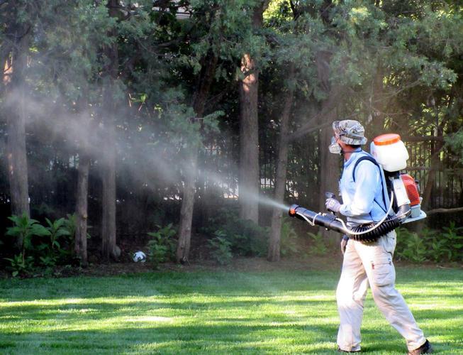Tree-Spraying-NJ-.jpg