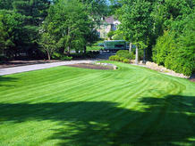 Luxury-Lawn-Services-New-Jersey.jpg