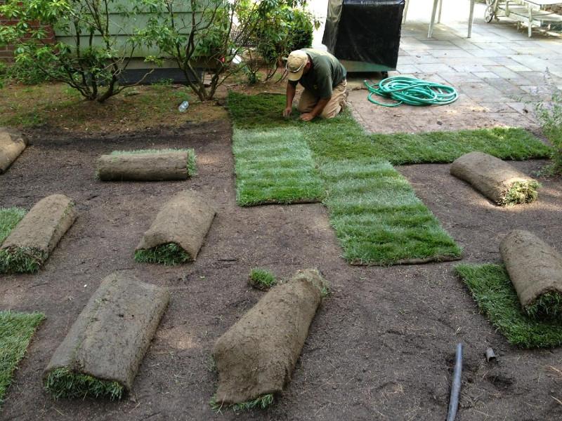 Lawn sod installation NJ