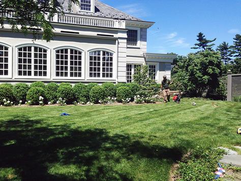 New-Jersey-Grass-Fertilizing.jpg