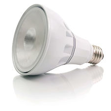 S30 Replacement Bulb Warehouse