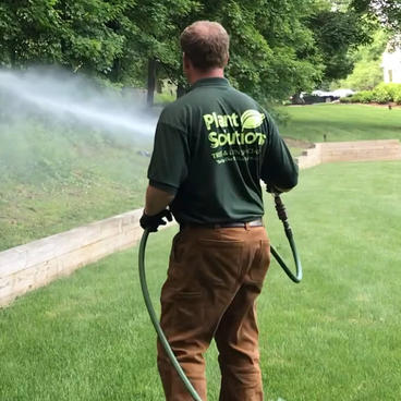 Spraying-Tree-Expert-NJ-.jpg