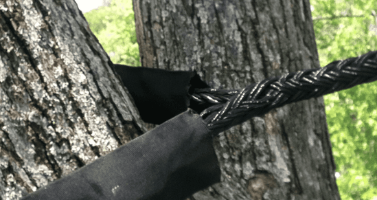 Tree-Cabling-Service-NJ.png