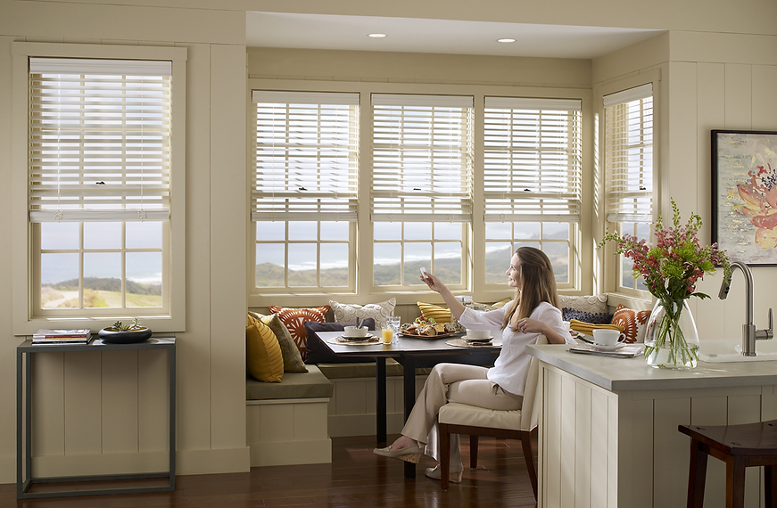 Lutron Motorized Shades.png