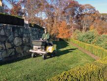 Lawn-Seeding-Services.jpg
