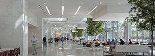 Amerlux NYC Distributor For Commercial Office Light-Fixtures