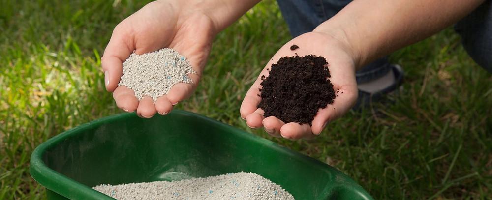 Chemical lawn care vs. organic lawn care