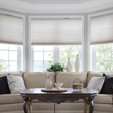 Lutron Motorized shades Blinds Dealer NJ