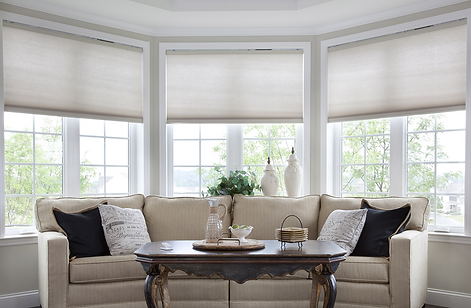 Lutron Motorized Shades Dealer NJ