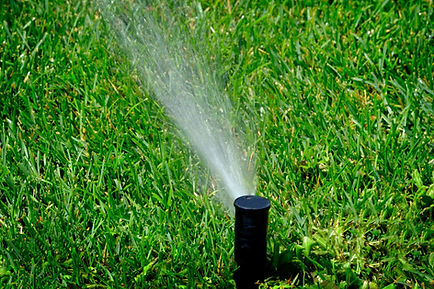Lawn-Irrigation-NJ.jpg