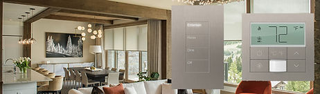 Home Works from Lutron Dealer For Texas.