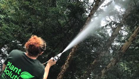 Tree-Expert-Sprayers-NJ-.jpg