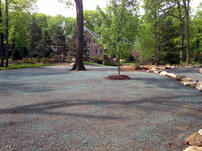 Tree-Planting-Services-NJ.jpg