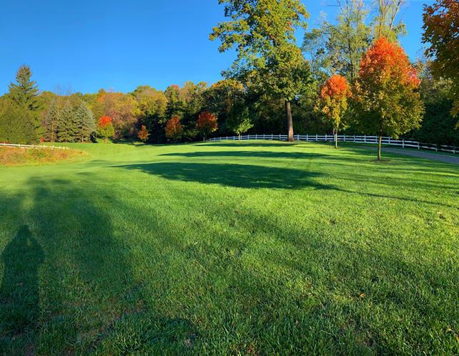 Landscaper-NJ-Basking-Ridge_edited.jpg