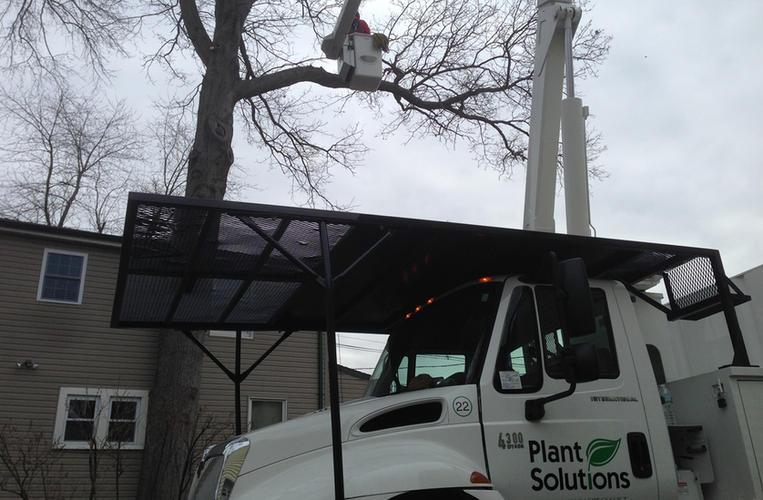 Tree-Service-Gladstone-NJ.jpg