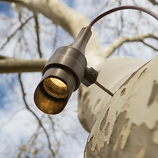 Tree Landscape Lighting Installer Long Island