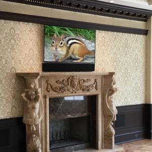 Luxury TV Installation.jpg