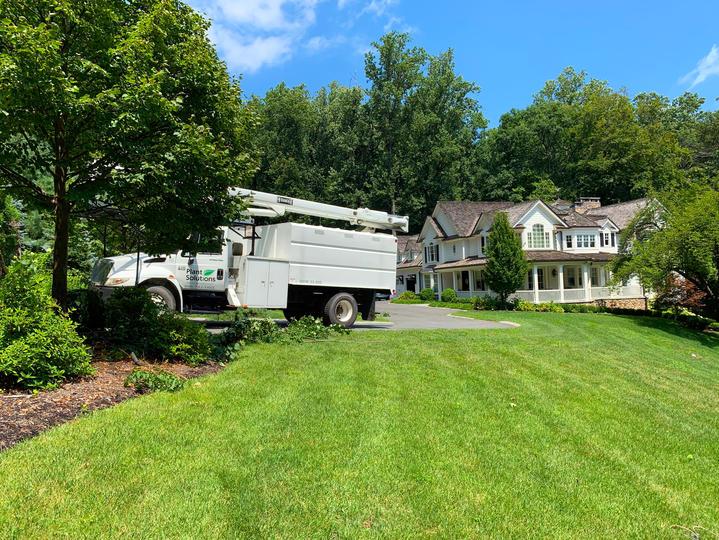 Lawn-Care-Services-NJ.jpg