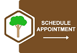 Tree-Servicesl-NJ-Services.png