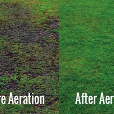 Lawn-Aeraton-Before-and-After.png